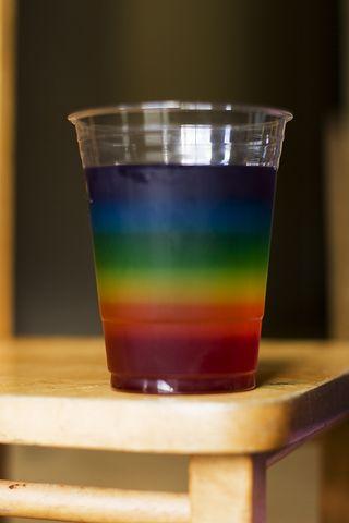 Light, Color, and Rainbow Unit Study